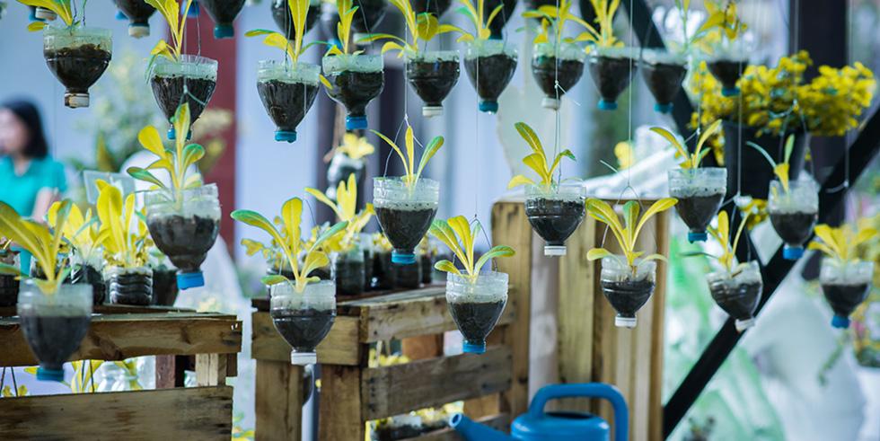 Upcycling-Tipp: Hängende Gärten…